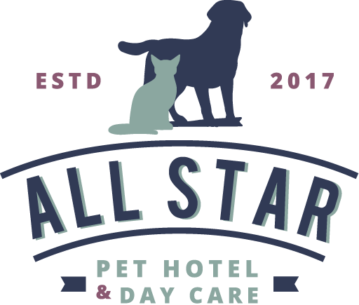 All Star Pet Hotel & Day Care